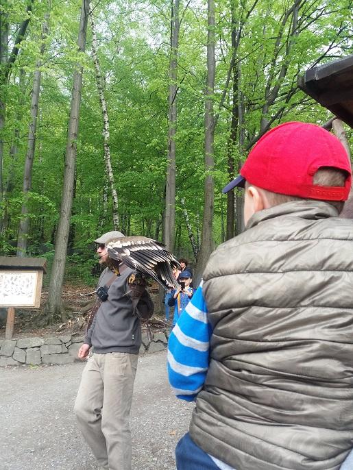 Leśny park niespodzianek czy warto rodzinne atrakcje dla dzieci opinie