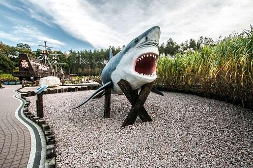 Sea Park Sarbsk opinie atrakcje rodzinne cennik