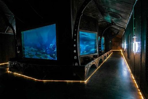 Sea Park Sarbsk opinie atrakcje
