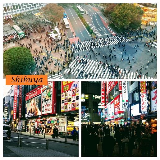 Shibuya Japonia z dziećmi opinie zwiedzanie co zobaczyć ceny atrakcje