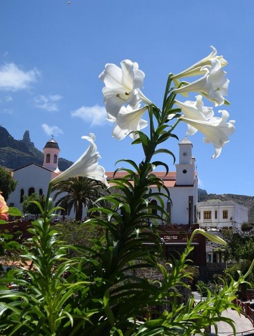 Tejeda Gran Canaria w maju pogoda opinie