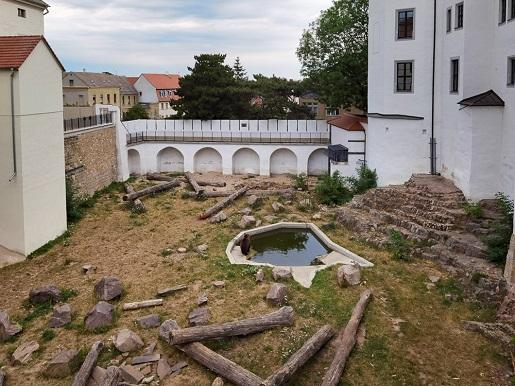 Torgau-19-atrakcje dla dzieci niemcy rodzinne