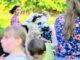 Zwierzaki nad Potokiem żukczyn atrakcje dla dzieci 4