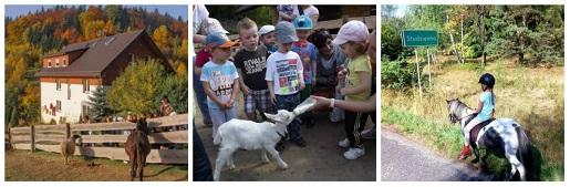 agroturystyka dla rodzin z dziećmi w Polsce polecane miejsca fajne