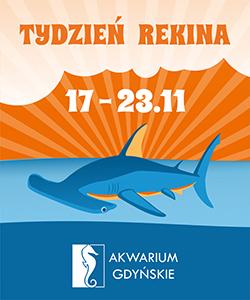 Tydzień rekina- Oceanarium Gdynia dla dzieci