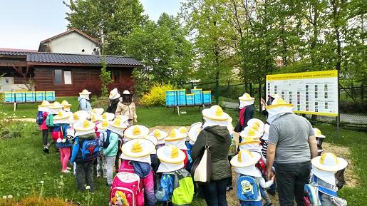 apilandia centrum pszczelarstwa opinie cennik wadowice