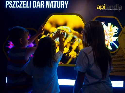 apilandia centrum pszczelarstwa wadowice opinie atrakcje rodzinne