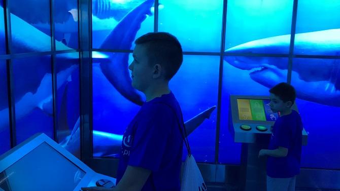 atrakcje dubai mall opinie z dzieckiem