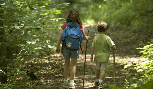 bieszczady z dzieckiem polecane szlaki gdzie z dziecmi w bieszczadach