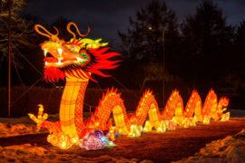 chiński festiwal światła atrakcje smok
