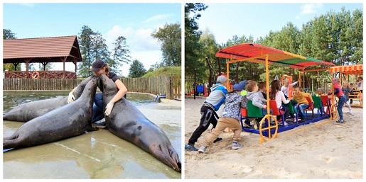dolina charlotty hotel na wakacje z dzieckiem 2020 pakiety rodzinne basen plac zabaw jezioro koncerty świat bajek