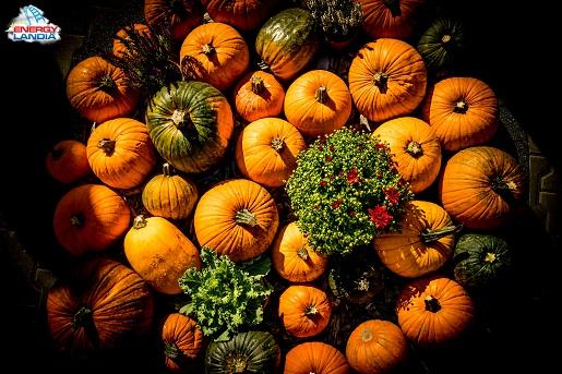 energylandia jesien wrzesien pazdziernik nowe godziny otwarcia atrakcje dla dzieci 4