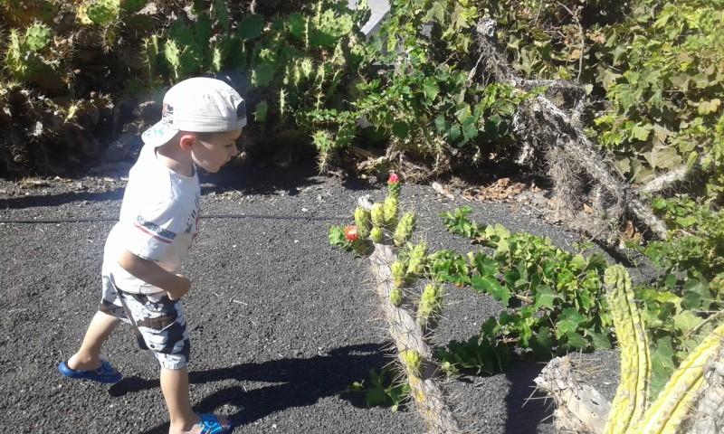 Fuerteventura z dzieckiem opinie atrakcje