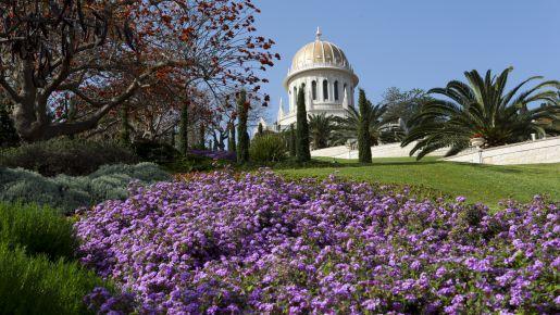 wczasy z dzieckiem Haifa Izrael