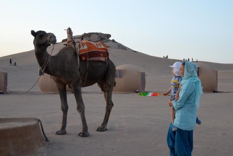 Iran pustynia wielbłądy atrakcje
