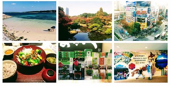 japonia wycieczka z dziećmi ceny co zabrać opinie