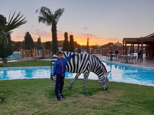 jungle aquapark hotel opinie zdjęcia jedzenie atrakcje restauracje spa baseny podgrzewane