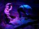 karkonoskie tajemnice wystawa multimedialna ceny opinie dizeci