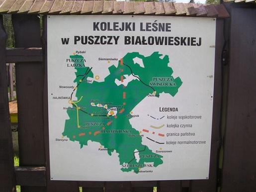 rodzinne atrakcje dla dzieci puszcza białowieska kolejki leśne ceny opinie