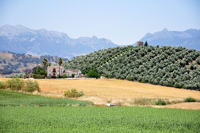 Hiszpania Andaluzja atrakcje opinie