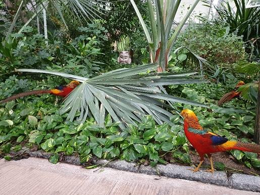 las deszczowy Tropical Islands opinie ceny