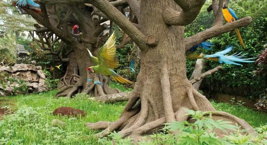 zoo Wyspy Kanaryjskie