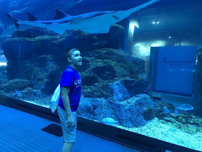 największe akwarium na świecie oceanarium Dubaj z dzieckiem opinie gdzie atrakcje
