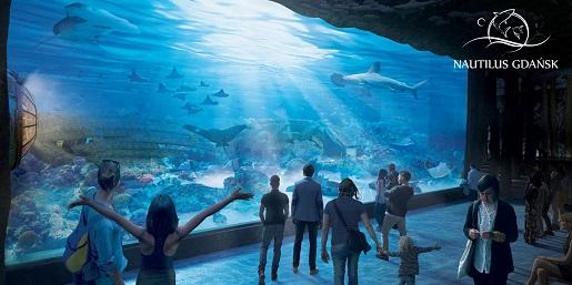 największe oceanarium w Polsce Gdańsk Nautilus opinie otwarcie kiedy