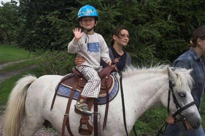 Stajnia Swarzewo opinie atrakcje mini zoo nauka jazdy konno