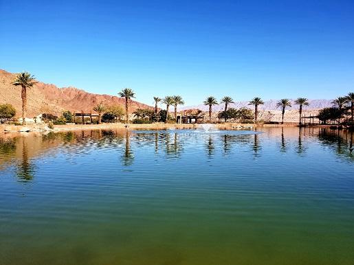 oaza w timna park zwiedzane atrakcje izrael