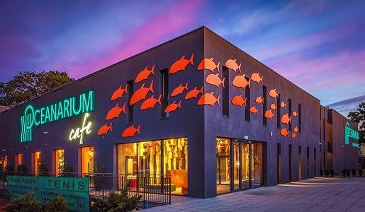 oceanarium miedzyzdroje atrakcje dla dzieci rodzinne 2