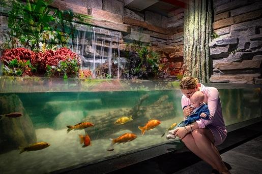oceanarium miedzyzdroje atrakcje dla dzieci rodzinne