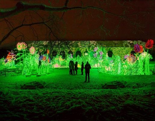 Opinie Królewski Ogród światła Cenygodziny Otwarcia Wilanów
