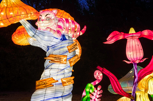 ogrody swiatel krakow zimowe malopolskie atrakcje dla rodzin z dziećmi