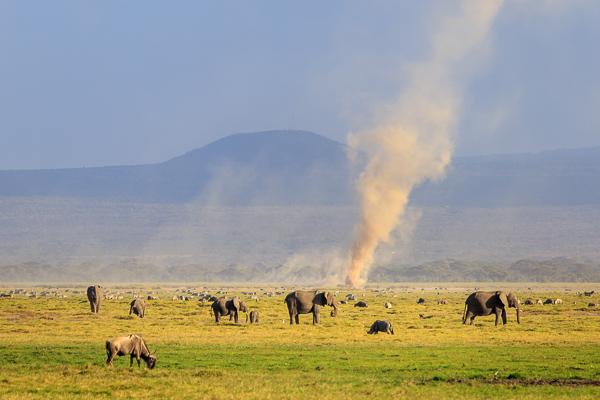 opinie wycieczka na Safari Kenia bezpieczeństwo praktyczne porady