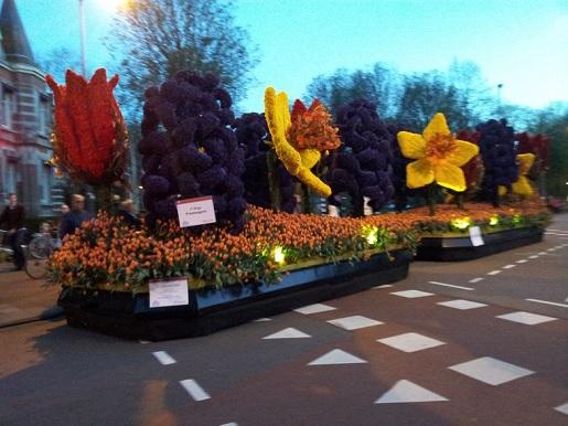parada kwiatów Keukenhof Holandia trasy ceny opinie