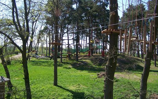 park linowy stegna atrakcje dla dzieci pomorskie