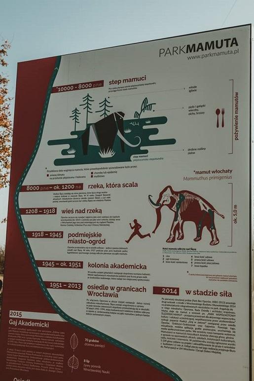 park mamuta atrakcje dla dzieci wrocław opinie