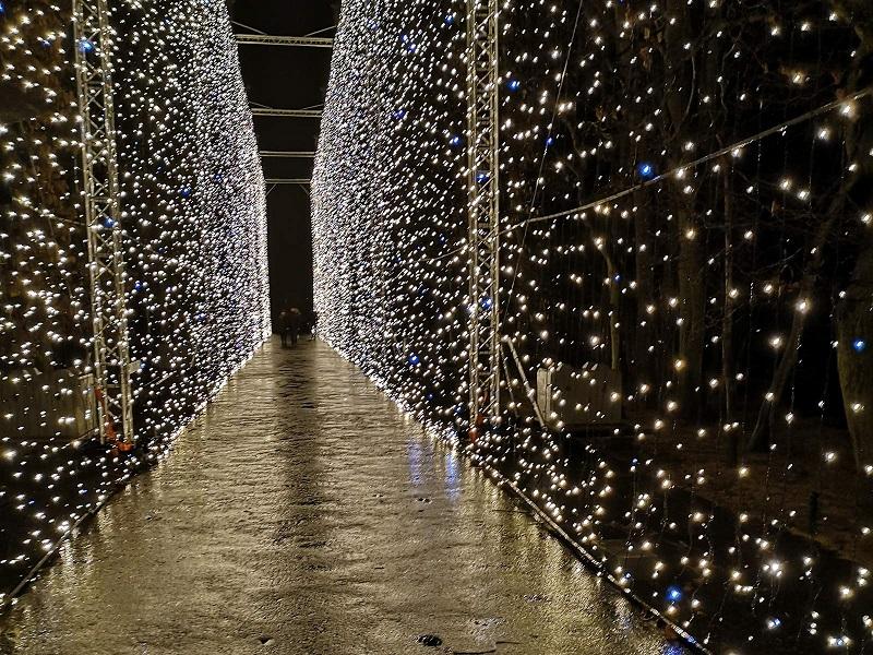 park oliwski iluminacje świąteczne 2019 2020 kiedy godziny otwarcia plan