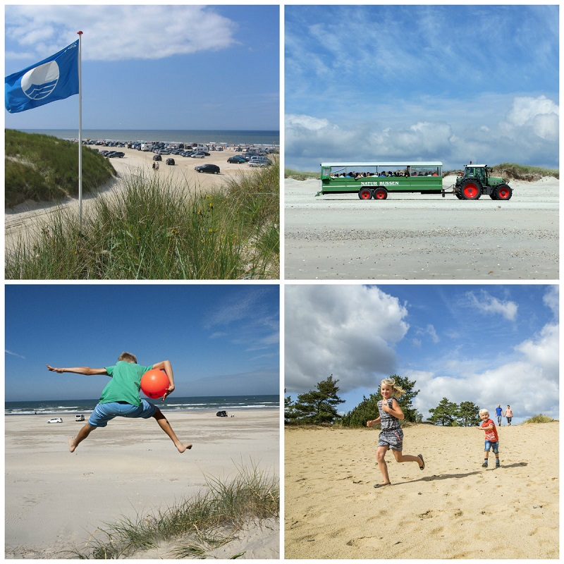 plaże Dania opinie samochodem morze wattowe atrakcje