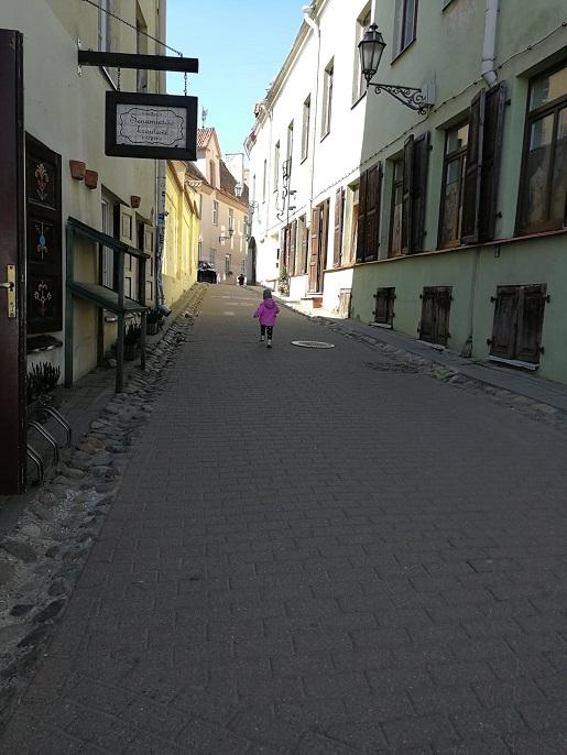 Litwa gdzie z dzieckiem rodzinne atrakcje Wilno opinie