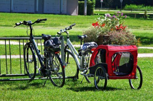 przyczepka rowerowa dla dzieci kiedy można