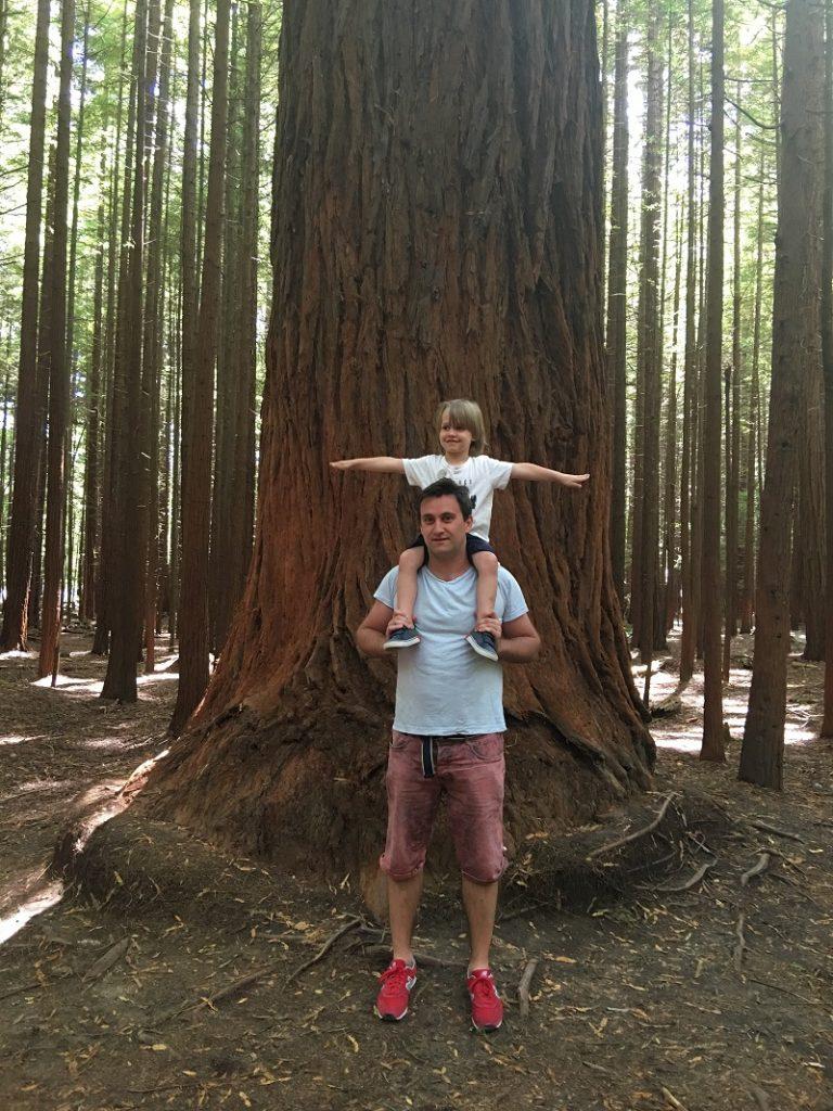 relacja z podróży do Nowej Zelandii wycieczka opinie lot z dziećmi