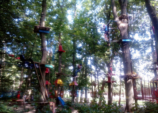 rewal atrakcje dla dzieci gdzie z dzieckiem w rewalu gibon park linowy opinie ceny bilety trasy