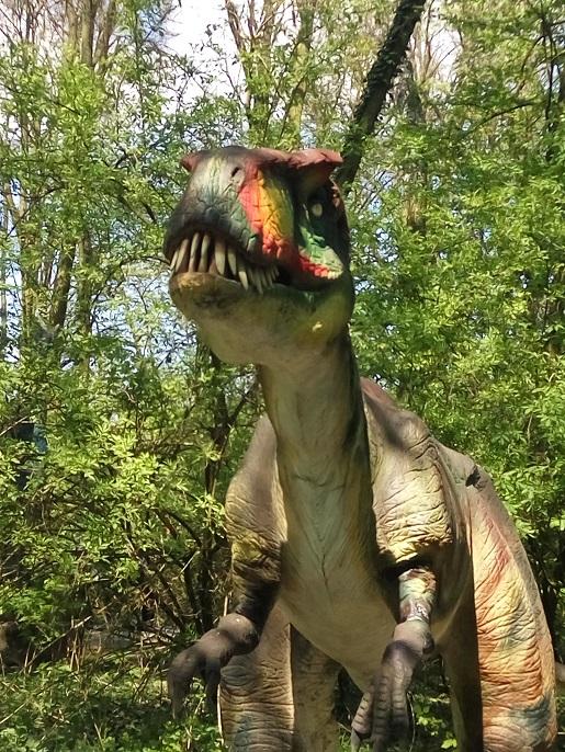 gdzie z dzieckiem malbork rodzinne atrakcje opinie dinopark
