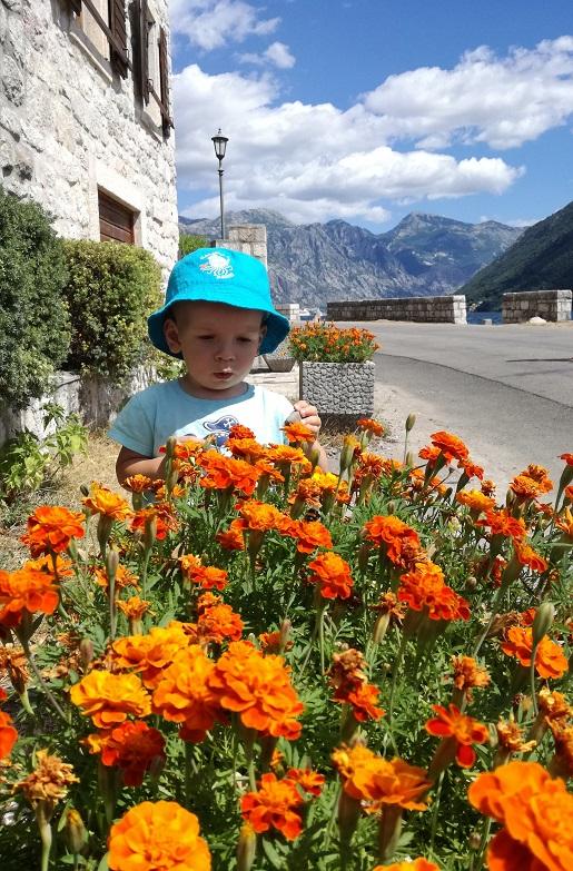z rocznym dzieckiem trasa do Chorwacji