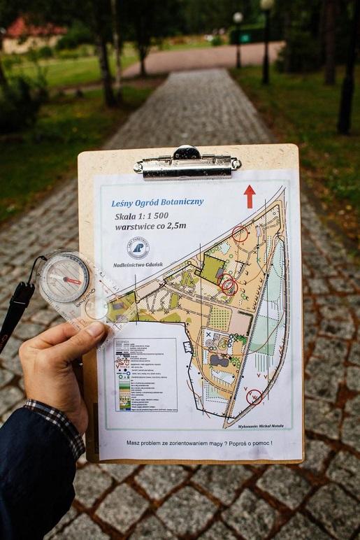 spacer z mapą lesny ogrod botaniczny marszewo atrakcje opinie