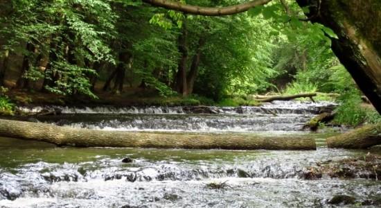 wodospady Tanew lubelskie rodzinne atrakcje