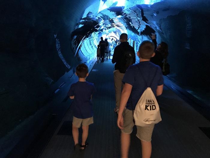tunel akwarium dubai mall oceanarium opinie największe akwarium na świecie