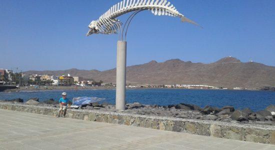 atrakcje dla dzieci Fuerteventura Hiszpania